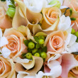 Peach colored roses — Stock Photo #9952373