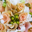 Peach colored roses — Stock Photo