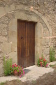 Front door of ancient house with flowers. — Stock Photo