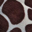 Giraffe Print — Stock Photo