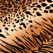 Tiger Cheetah Print Background — Stock Photo #10027786