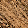 Stock Photo: Mountain Bike Tracks