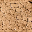 Tan Cracked Ground, Dirt or Mud - Stock Photo
