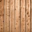 Wood Panel Background — Stock Photo #10028656