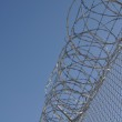 Prison Security Fence — Stock Photo #10029418