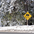 Winter Storm Warning Caution Driving Sign — Stock Photo #10029485