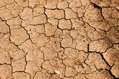 Tan Cracked Ground, Dirt or Mud — Stock Photo