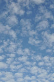 Vertical Blue Sky and White Cloud Background — Stock Photo