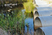 Drainage Pipes flowing into Green Pond — Stock Photo
