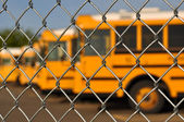 Multiple School Bus with Blue Sky — Stock Photo