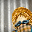 Scarecrow — Stock Photo #10363799