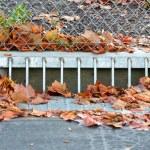 Sidewalk Storm Drain Gutter — Stock Photo #10363833