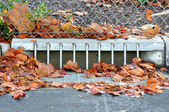Sidewalk Storm Drain Gutter — Stock Photo