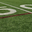 Stock Photo: Fifty Yard Line
