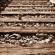 Vertical Railroad Track in Fall — Stock Photo
