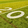Twenty Yard Line on American Football Field — Stock Photo