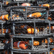 Crab Pots — Stock Photo