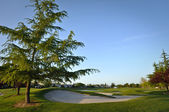 Golf Course in Residential Area — Stock Photo