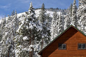 Winter Cabin with Snow Covered Trees and Mountain in Background — Stock Photo