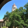 stanford university — Stock Photo