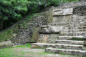 マヤ遺跡の寺院 — ストック写真