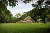 Mayan Temple — Stock Photo