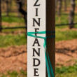 Stock Photo: Zinfandel Wine Marker