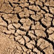 Cracked Ground Dirt — Stock Photo