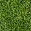 Fake Grass used for outdoor sports - Stock Photo