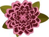 Pink chrysanthemum flower on white background. — Stock Vector
