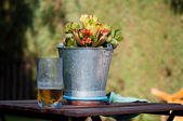 Flowers and beer — Stock Photo