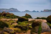 Green rock sea — Stock Photo