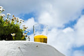 Beer at sun — Stock Photo