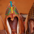 Indian Shoe - Stock Photo