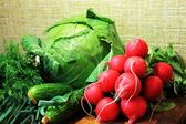 Composition of spring vegetables — Stock Photo