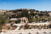 Maslinichnaja mountain Jerusalem — Stock Photo