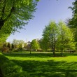 Fine big park in  Riga — Stock Photo