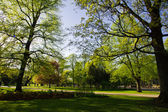 Landscape in park in Riga — Stock Photo