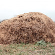 Haystack — Stock Photo #9948094