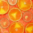Lime, lemon, grapefruit and orange slices — Stock Photo #10152085