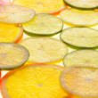 Lime, lemon, grapefruit and orange slices — Stock Photo
