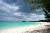 Zanzibar — Fotografia Stock