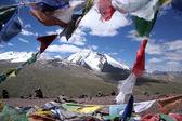 Mount Kang-Yatze — Stock Photo