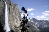 Yosemite Falls and Half Dome. — Stock Photo