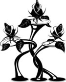 Black Roses — Stock Vector