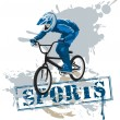 Extreme cycling - Stock Vector