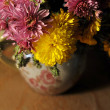 Flowers, asters — Stock Photo #10482551