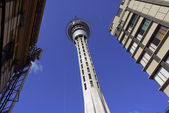 Auckland skytower — Stock Photo