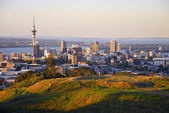 Auckland city — Stock Photo