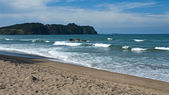 New Zealand beach — Stock Photo